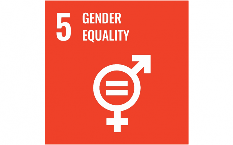 UN Sustainability Goal, Gender Equality