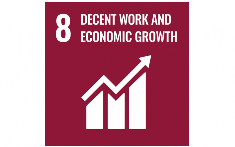 UN Sustainability Goal, Decent Work and Economic Growth